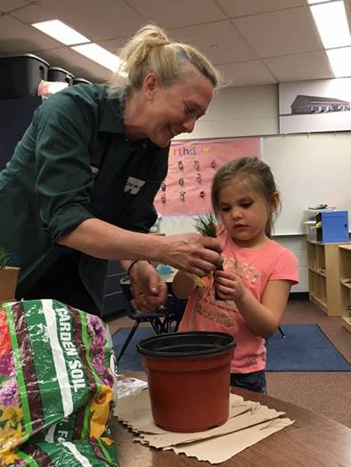 Head Start Student Plants Vegetables